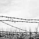 Barb Wire Fence by pennyswork