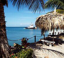 Isla Margarita, Venezuela by saxonfenken