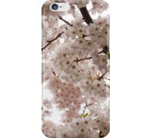 A Cloud of Pastel Pink Cherry Blossoms Celebrating the Arrival of Spring  iPhone Case/Skin