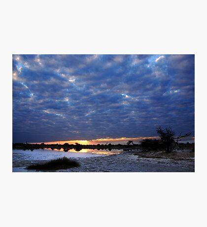 Blue sunset - Okavango Delta, Botswana Photographic Print