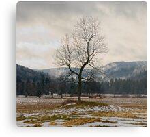 Winter Plains Metal Print