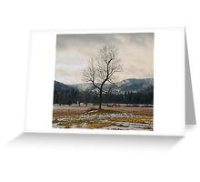 Winter Plains Greeting Card