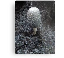 Mushroom on Magnolia Metal Print