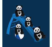 CUTE..PANDAS HAVING FUN..CHILDRENS (KIDS PILLOW-TOTE BAGS ECT) Photographic Print