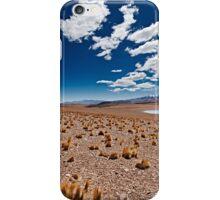 Reserva Nacional de Fauna Andina Eduardo Abaroa, Bolivia iPhone Case/Skin