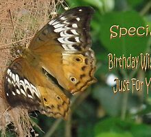 Golden Butterfly-Birthday Card by judygal
