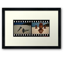 2 Screw U3 @ Sculptures By The Sea Framed Print