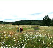 Summer in Dalsland by HELUA