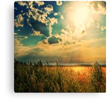 When The Angels Dance Canvas Print
