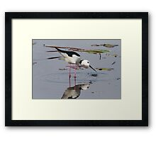Successful Catch Framed Print