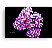 RIBBON FLOWERS Canvas Print