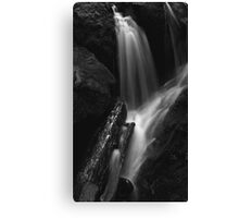 water and light, wood and stone... Canvas Print