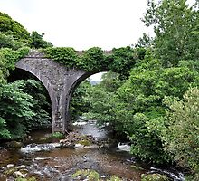 The Bridge the Train fell Off, Camp. Kerry, Ireland by Pat Herlihy