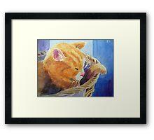 Tom's spot Framed Print