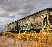 Whispers of the Rail by Sue  Cullumber