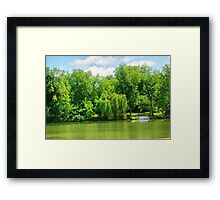 River Willow Framed Print