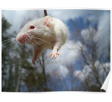 Supermouse Poster