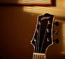 Collings CJ Series by Nick Bland