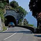 Lake Garda - Roads and tunnels by imagic