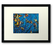 Golden Leaves III Framed Print