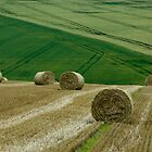 Bales by JamesTH