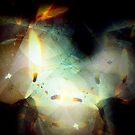 leuchtkasten by codswollop