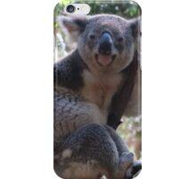 Koala, Queensland Australia iPhone Case/Skin
