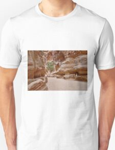 As-Siq or canyon in Nabataean ancient town Petra T-Shirt