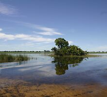 The okavongo delta by jozi1