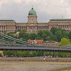 Buda & Pest, 2010, 13 by Priscilla Turner
