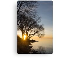 On Fire - Sunrise Through The Willows Canvas Print