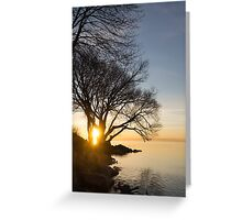 On Fire - Sunrise Through The Willows Greeting Card