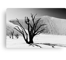 Dead Vlei with dead trees in desert landscape of Namib BW 01 Canvas Print