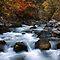Autumn Rivers