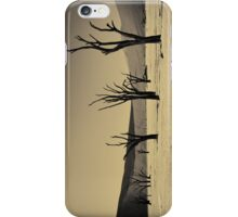Dead Vlei with dead trees in desert landscape of Namib BW 02 iPhone Case/Skin