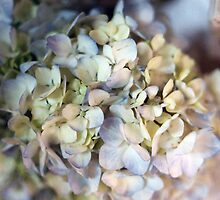 wedding flowers 5 by Katie Perry