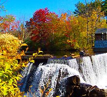 Falls of color by Michele Simon