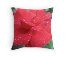 Refreshingly Red Rose Throw Pillow