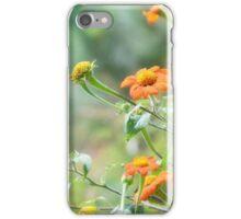 Orange wildflowers CALIFORNIA  iPhone Case/Skin