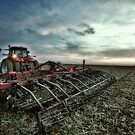 Case IH by Steve Baird