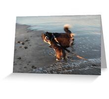 Beach Brawl Greeting Card