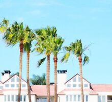 Coronado Palms CALIFORNIA  by CaptureLight