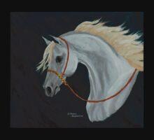 Arabian show horse by TranquilArt