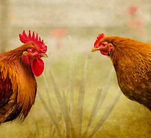 Hen Party, Do You Come Here Often? by Linsey Williams