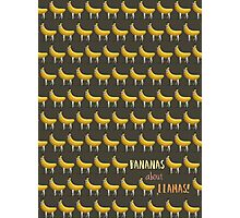 Bananas About Llamas Pattern Photographic Print