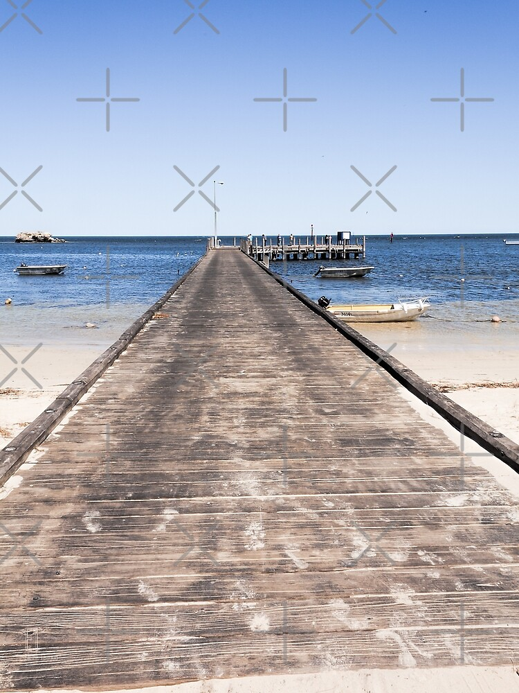 Boardwalk, Leeman, Western Australia by Elaine Teague