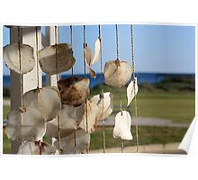Shells hanging, Cervantes store, winter morning Poster