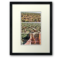 A COLLAGE ON AERIAL CAPTURES ... How wild- animals gets re-located Framed Print