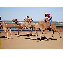 Racing Camels Photographic Print