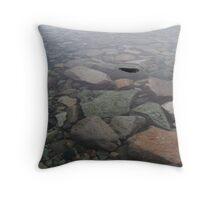 Danco Island - Antarctic Peninsula Throw Pillow